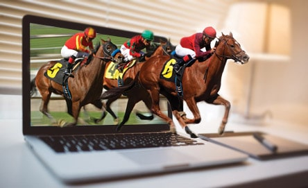 Online Horse Betting Tips